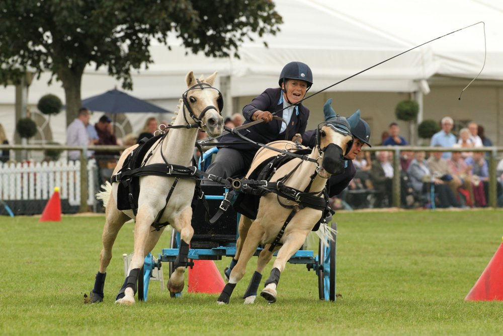 The Scurry Driving Championship Final. Photo from: Newbury Showground