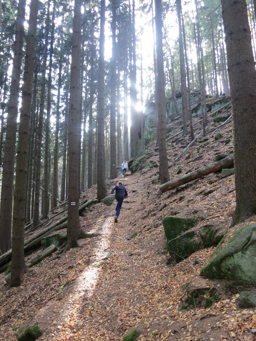 Hiking uphill in the Gory Stolowe National Forest