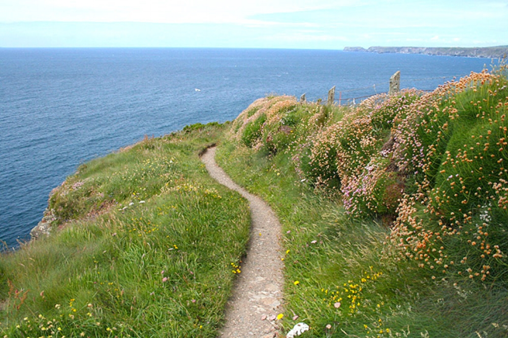 St_Endellion,_coast_path_near_Port_Gaverne_1_-_geograph.org.uk_-_850866.jpg
