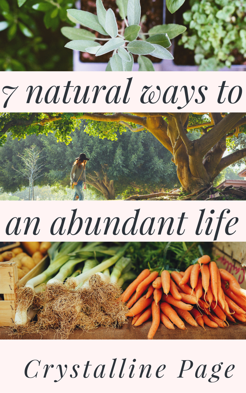 7 natural ways to an abundant life.png