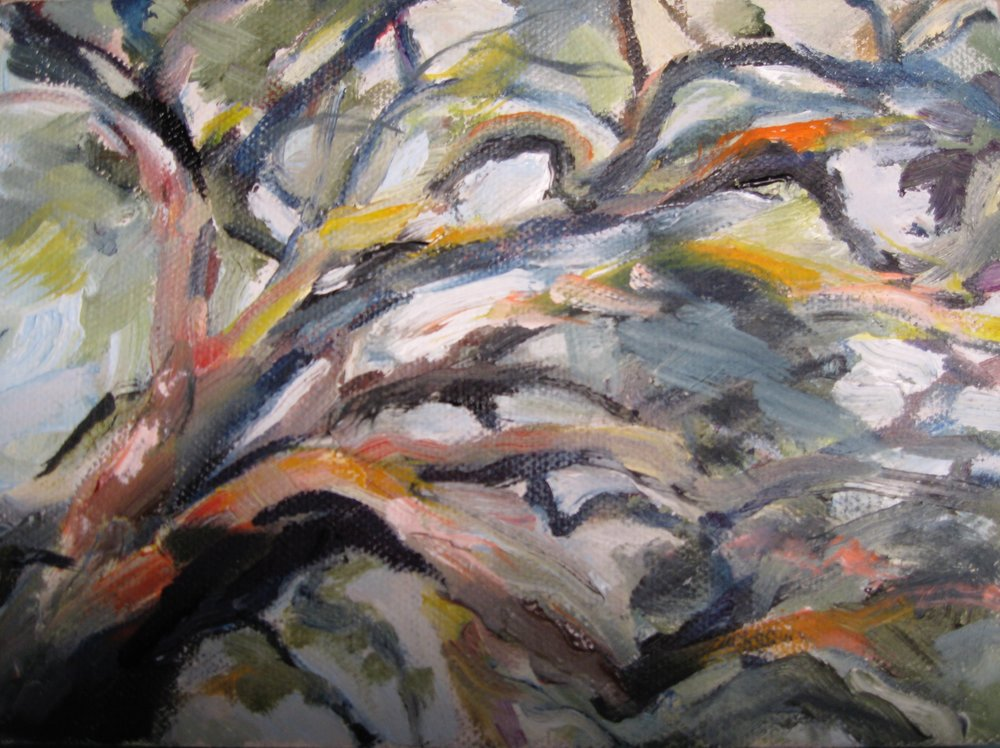 """Branches II, 7x5"""", Oil"""