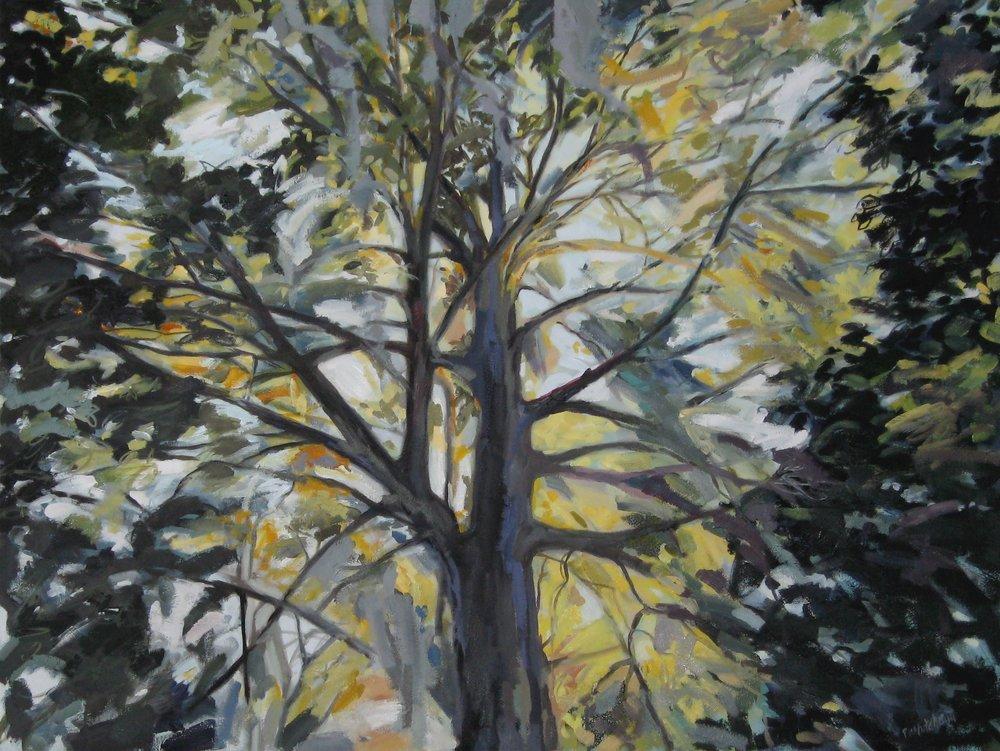 """Black Shadows at Dawn, 40 x 30"""", oil (sold)"""