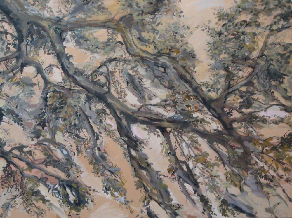 """Dawn Breeze, 40 x 30"""", Oil, (sold)"""