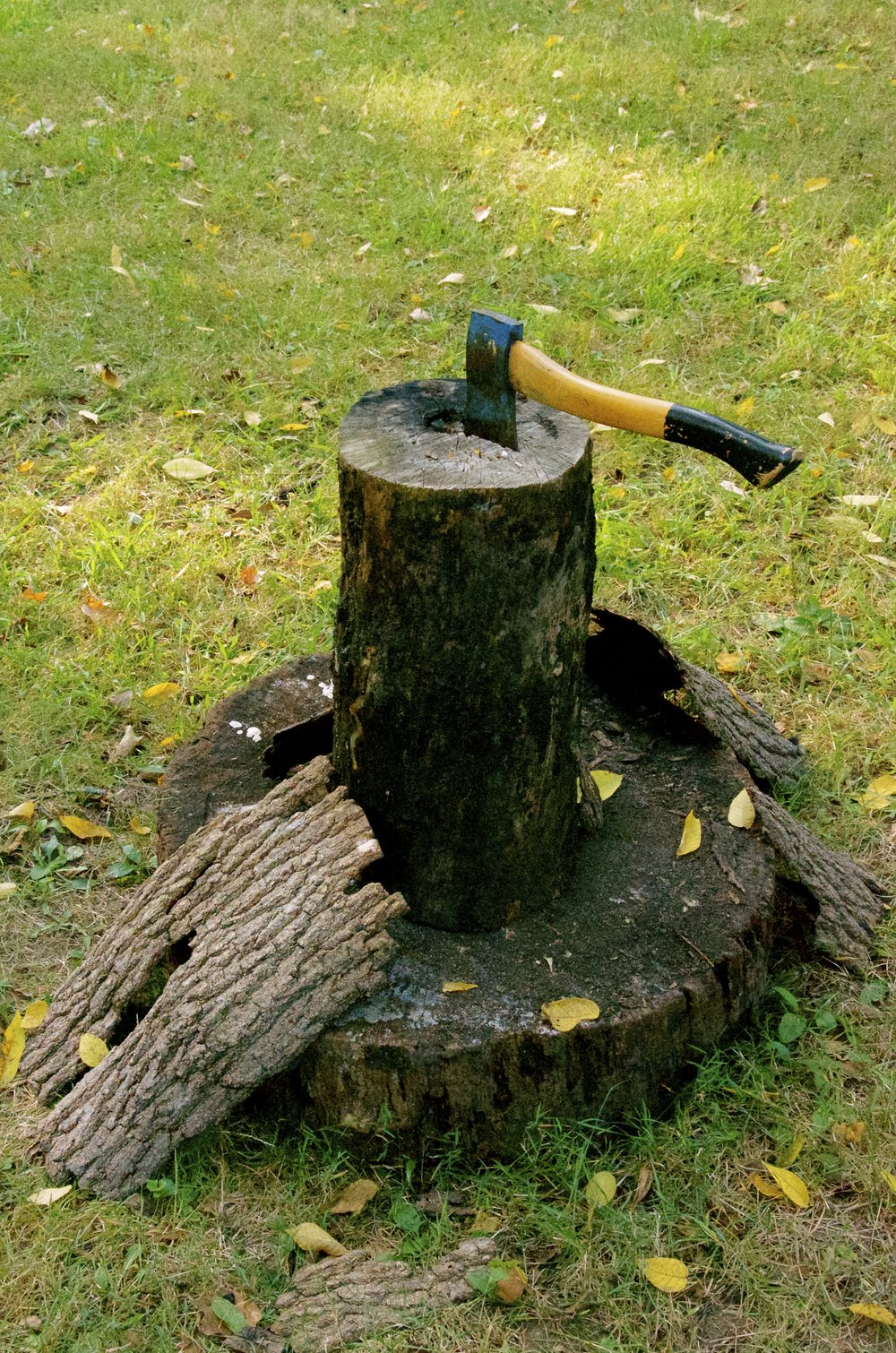 Axe in a stump