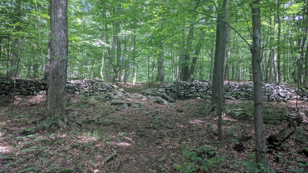These rock walls are everywhere along the trail.  These are all the rocks early settlers pulled up to try to cultivate this land.  This wall is three feet thick.  Poor souls.