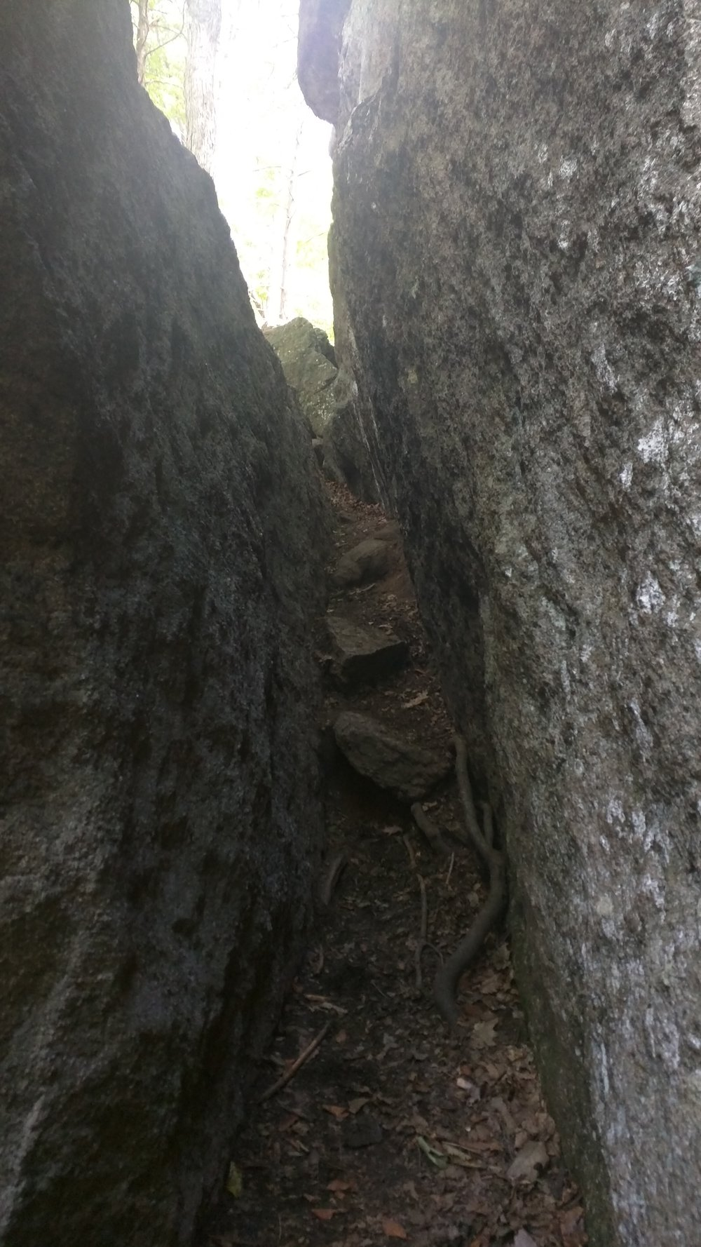 "I had to take my backpack off and throw it up on the ledge to the left to squeeze through here. Immediately after I had to do the same thing to do a vertical rock climb.  There was a route labeled ""Easy Way"", but I'm not out here for that."