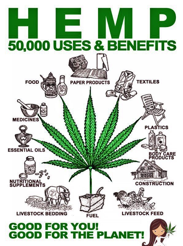 The wonders of Hemp