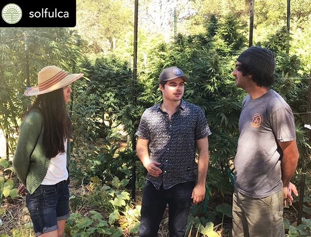 We'll be in Sebastopol this Saturday from 1 - 5pm. Always love to visit our #SolfulFamily. We are bringing veggie and flower (non-cannabis) seeds to pass out too ❤️🌟💚 see you all soon 🌱🌻😊 Posted @withrepost • @solfulca Meet The Farmer – @moongazerfarms! Sat, January 19th 1:00 pm – 5:00 pm  Love Regenerative Cannabis? Interested in Huglekultur? Then Come Meet The Farmer!  You're invited to spend the afternoon with Josh + Sandra of Moon Gazer Farm. Learn why this award-winning boutique cannabis farm is so passionate about regenerative farming and nurturing the cannabis plant.  Interested in building your own Hugle bed? Josh + Sandra love answering questions and sharing tips on how to build your own. Plus you'll get up close and personal with their amazing cannabis strains, who doesn't love getting a behind the scenes look? https://solful.com #SolfulCA . . . . . . . . . #Sebastopol #cannabis #dispensary #cannabiscommunity #westcounty #healthandhappiness #sonomacounty #SupportYourLocalPotFarmer #Solful #Cannabis #PartnerLove #SebastopolLocal #MoongazerFarm #Huglekultur #PotFarmer #MeetTheFarmer