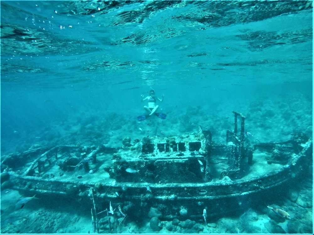 Gone Snorkeling - Tugboat - Starting from USD 65 $