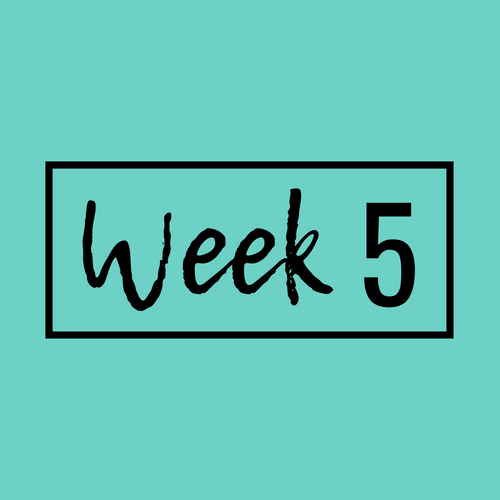 Week 5-min.png