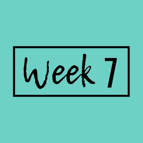 Week 7-min.png