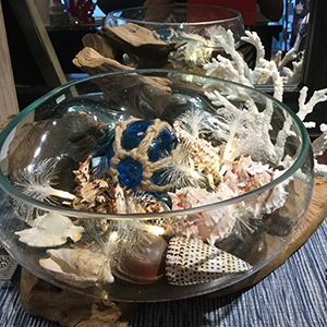 WEST COAST NAUTICAL DECOR   Stylish west coast decor pieces for your home or gifts  Blown glass bowls on beach wood Nautical wall art Beach and lake signs Driftwood lamps *locally made Shells and starfish Sand and rocks Wall hooks