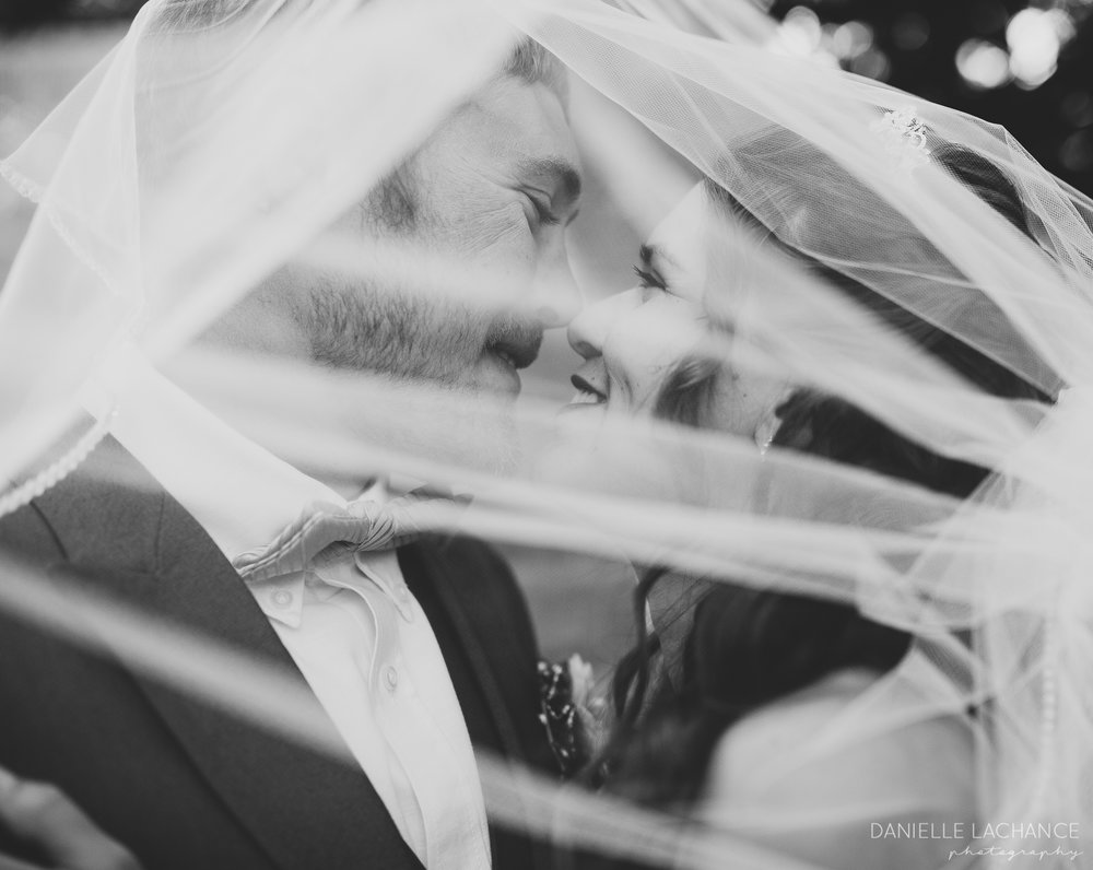 southern maine wedding photographer bride groom veil portrait