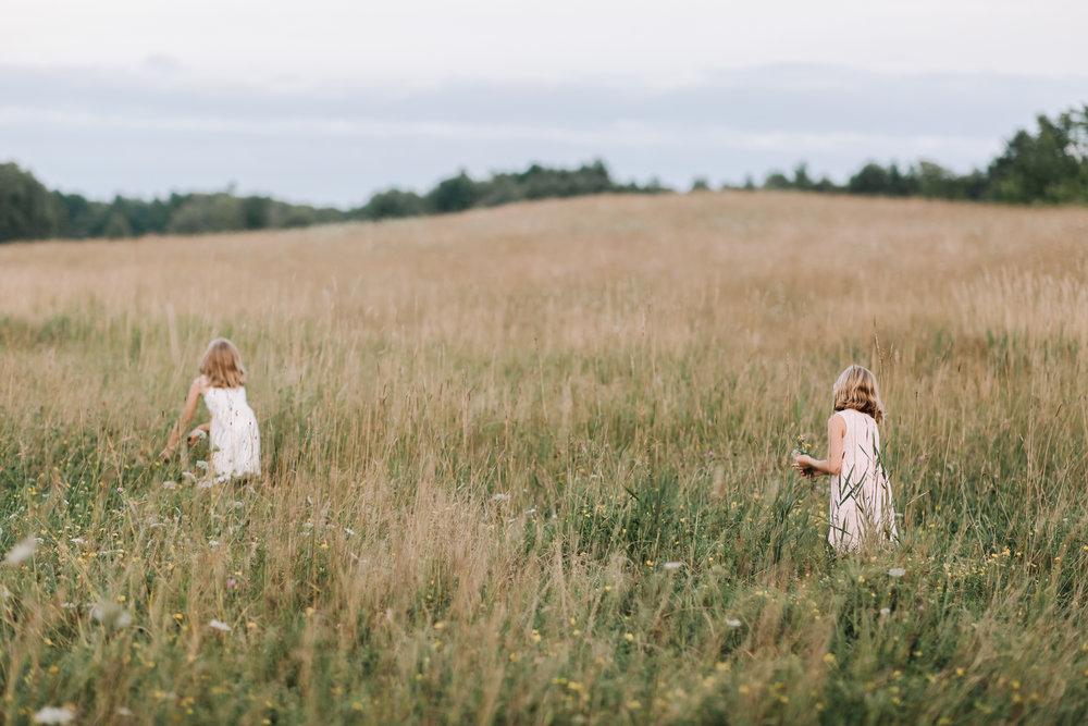 dayton-maine-field-photographer.jpg