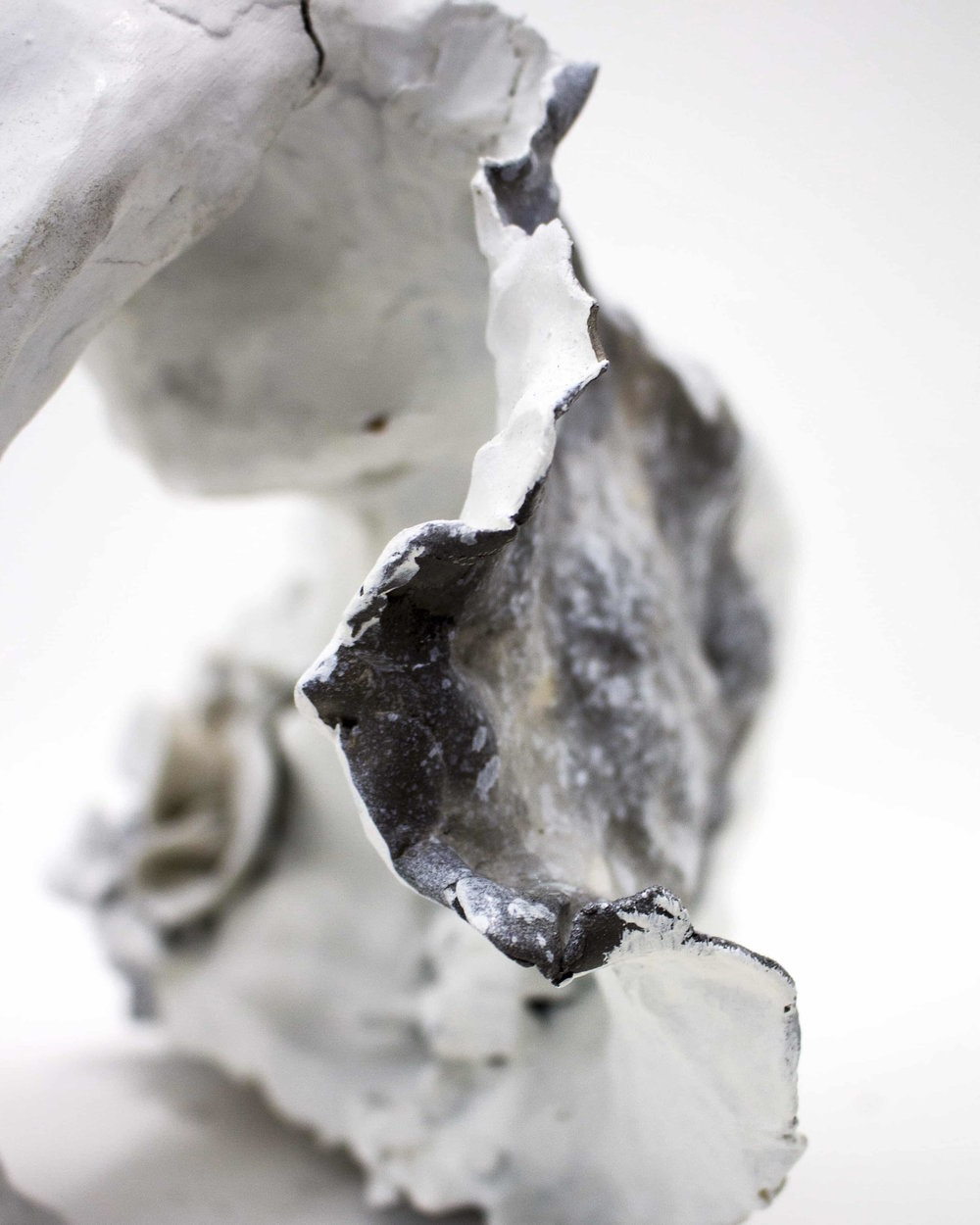 White Pod (detail),  2014   Not Available