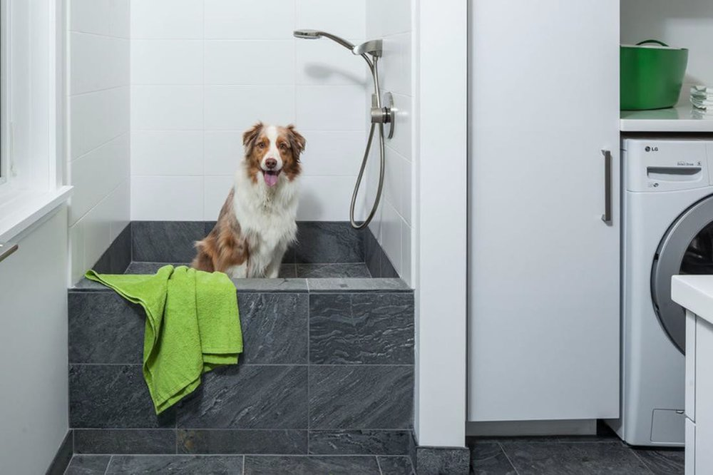 via :  https://www.houzz.com/ideabooks/73109849/list/how-to-install-a-dog-washing-station