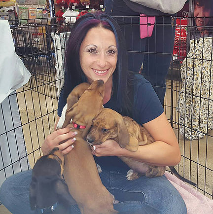 "Stephanie Egeberg: Director of Fosters and Volunteers Stephanie has been a part of the rescue community for the past 5 years.  Including volunteering at adoption events, recruiting additional volunteers, participating in fundraising events.  She has been a foster mom to over 150 dogs and puppies and couldn't imagine life without a few fostering. With an extensive background of management positions, including district management, leading groups of anywhere from 5-40 employees at any given time provides a multitude of transferrable skills which will help in multiple ways through out the rescue.  She has a love of all breeds, but has worked mostly with the ""littles"" as the group likes to call them. Stephanie has three dogs, Skato, Mya and Odin. She is very much looking forward to a life long dream coming true with this rescue and helping save more lives by educating the public."
