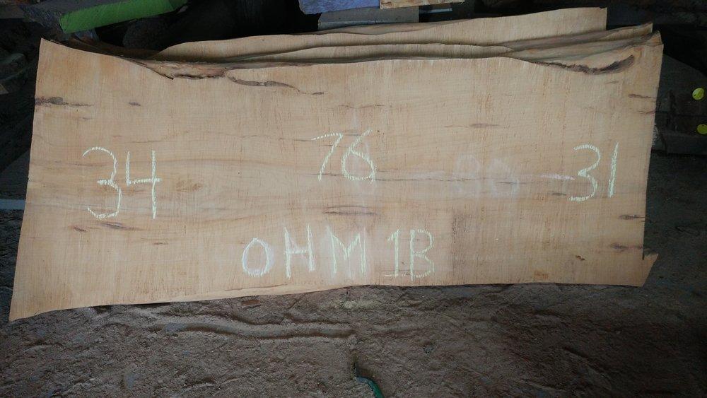OHM1B.jpg