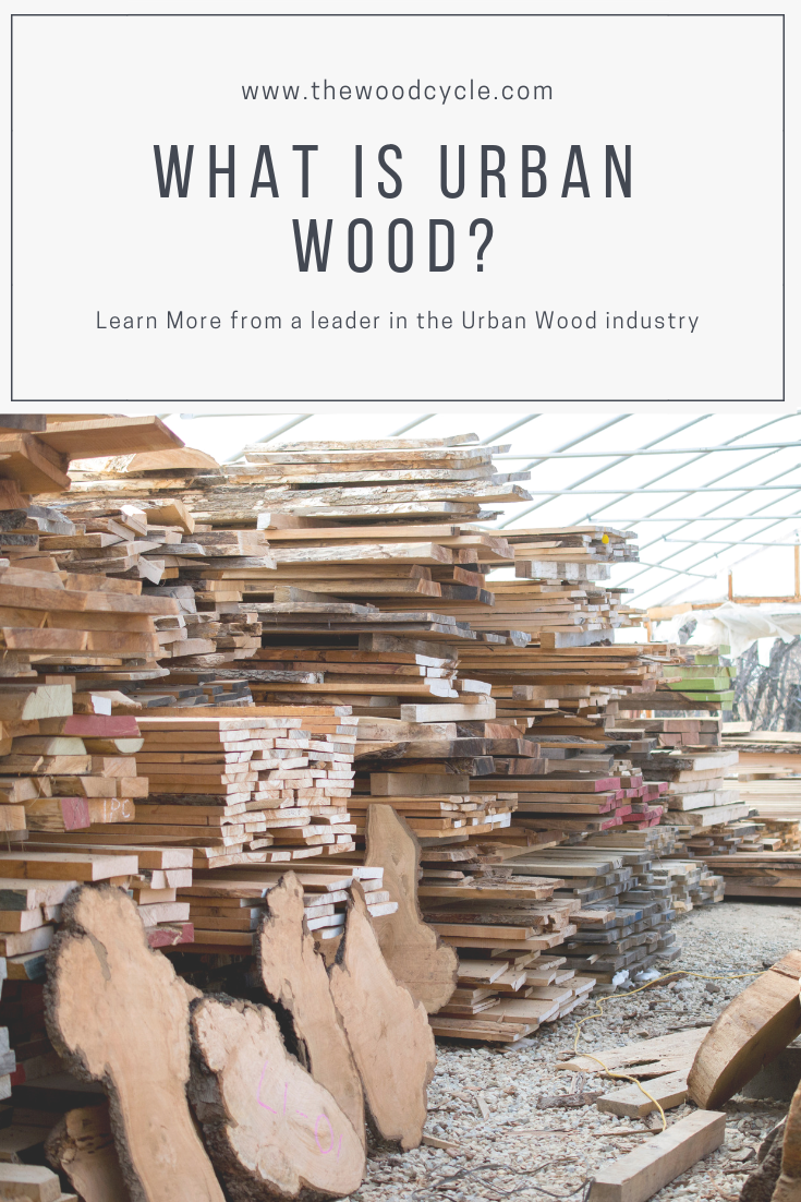 What is urban wood? | The Wood Cycle | Madison Wisconsin