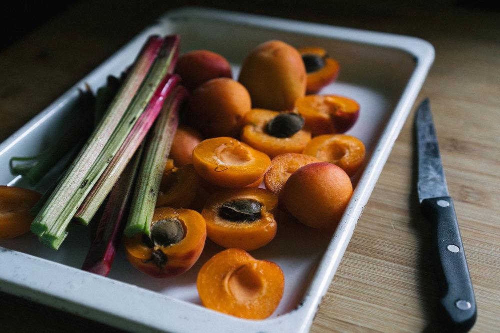 rhubarb_apricot_almond_tart-2.jpg