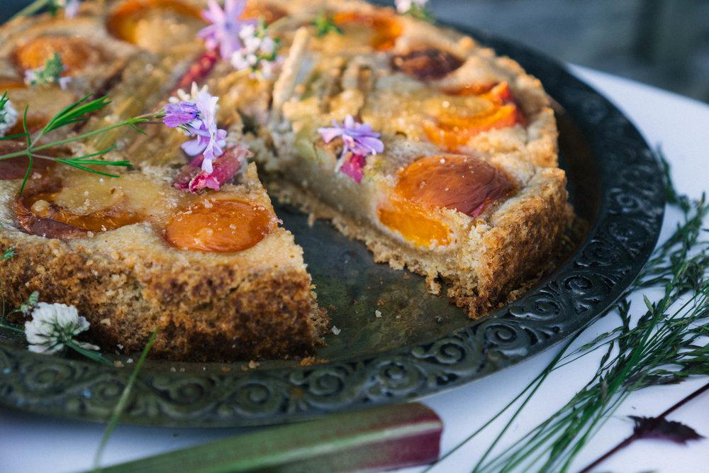 rhubarb_apricot_almond_tart-23.jpg
