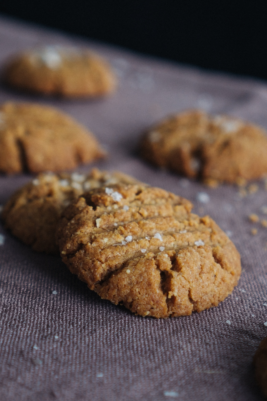 crunchy_almond_butter_cookies-7.jpg