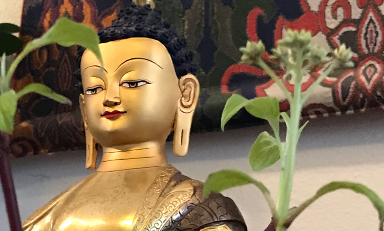 BuddhaSprouts3.jpg