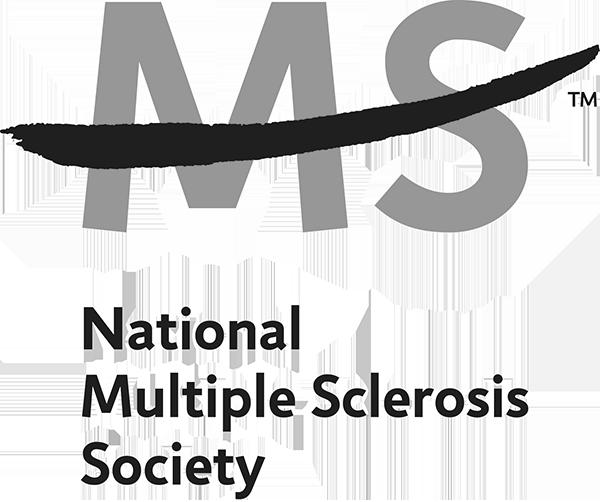 NMSS GRAY.png