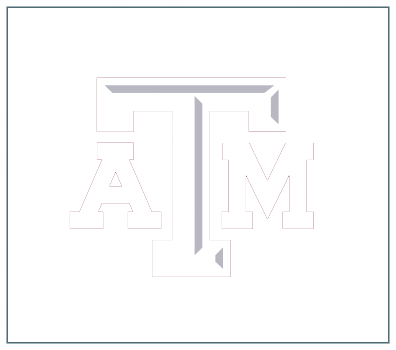 Texas A&M Healthy Texas -