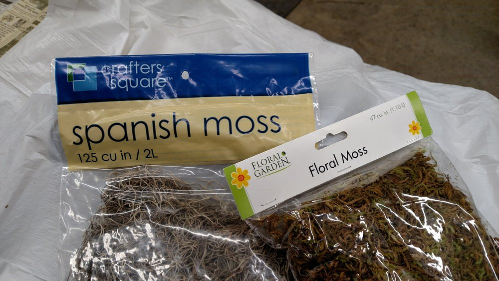 Spanish and Floral Moss.jpg