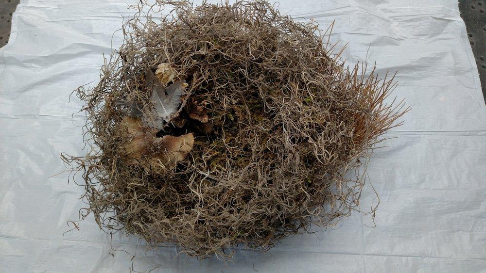 Finished Nest #8.jpg