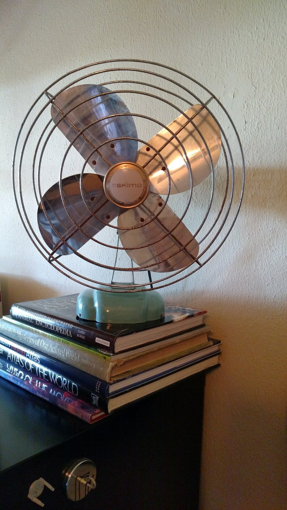 Vintage Fan.jpg
