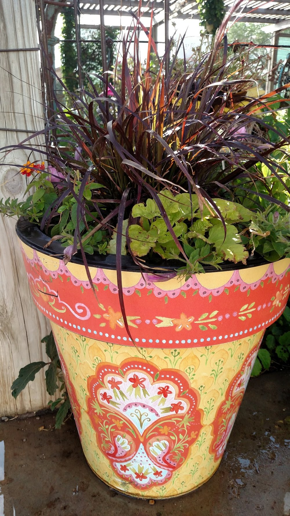 ORANGE AND YELLOW PLANTED POT.jpg
