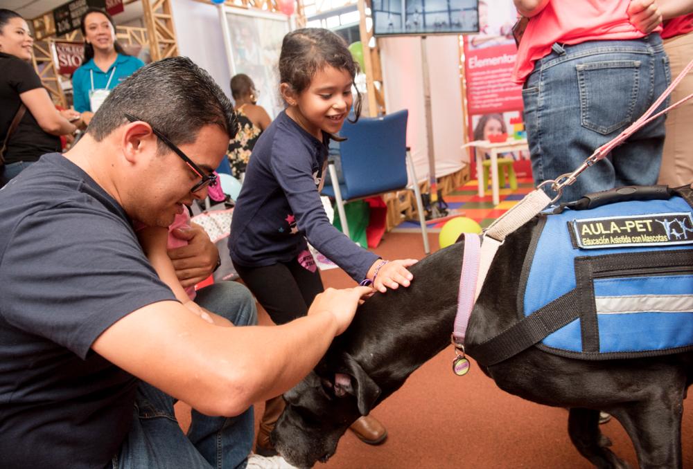 Maggie es una gran danés y perro de terapia de Aula Pet y estuvo muy ocupada durante la Feria de Colegios EKA 2017 recibiendo y dando cariño a todas las familias asistentes.