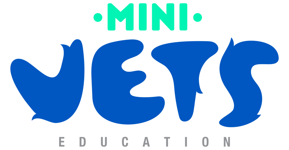 MV EDUCATION LOGO .png