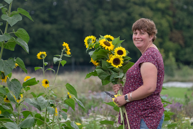 Claire holding sunflowers.jpg