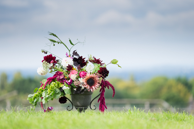 Sunflower Ruby Eclipse as the hero flower, with sweet pea trails, molucella and amaranthus highlighting the dark dahlias
