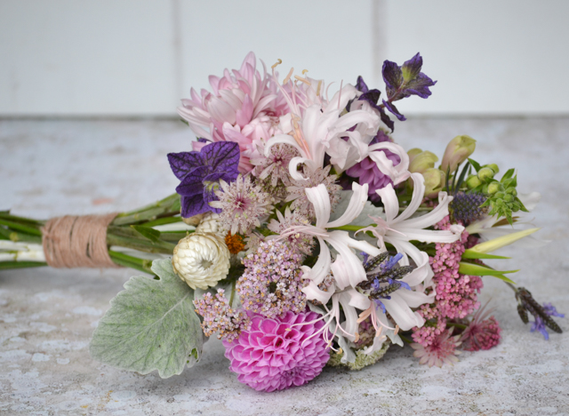 Bridal bouquet with Nerines, Dusty Miller, Helichrysum, Astrantia, Eryngium, Clary Sage, Digitalis, Dahlias, Achillea, Acidanthera, Chrysanthemum Allouise pink and Lavender multifida