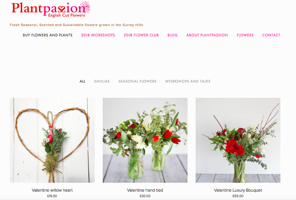 Valentine website page.jpg