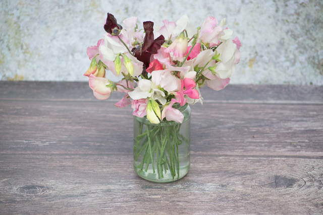 Sweet peas in a jam jar
