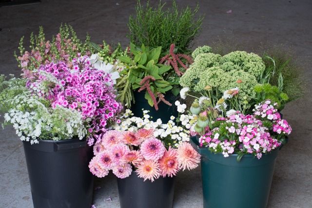 Buckets of wedding flowers August.jpg
