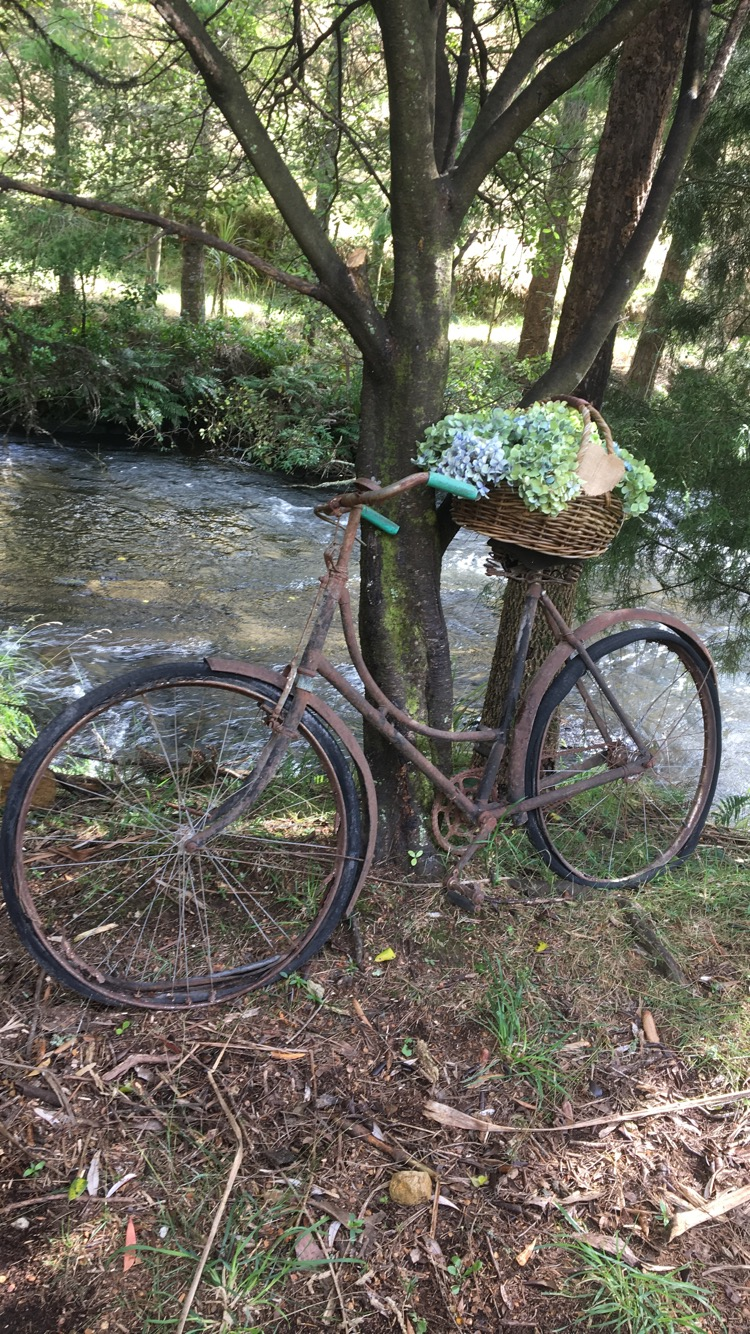 Wedding design, floral, hydreanga, bicycle, theme