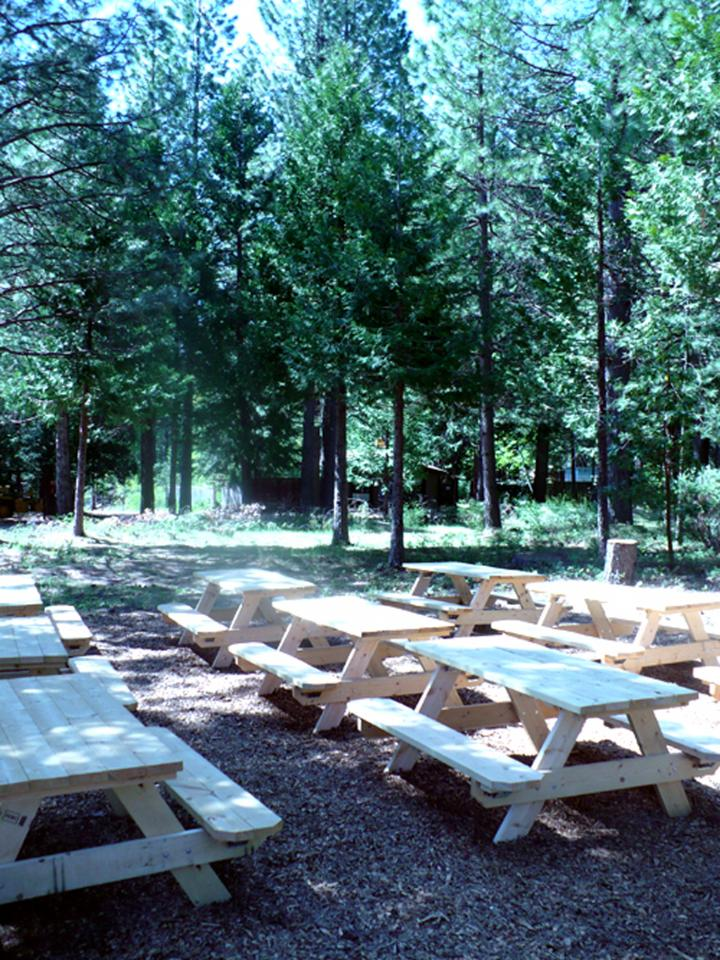 new_picnic_area.jpg