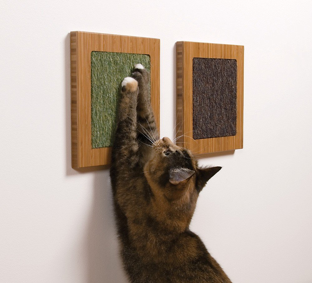 sq-cat-scratcher.jpg