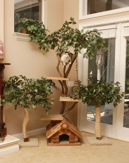 pinterest tree 2.jpg