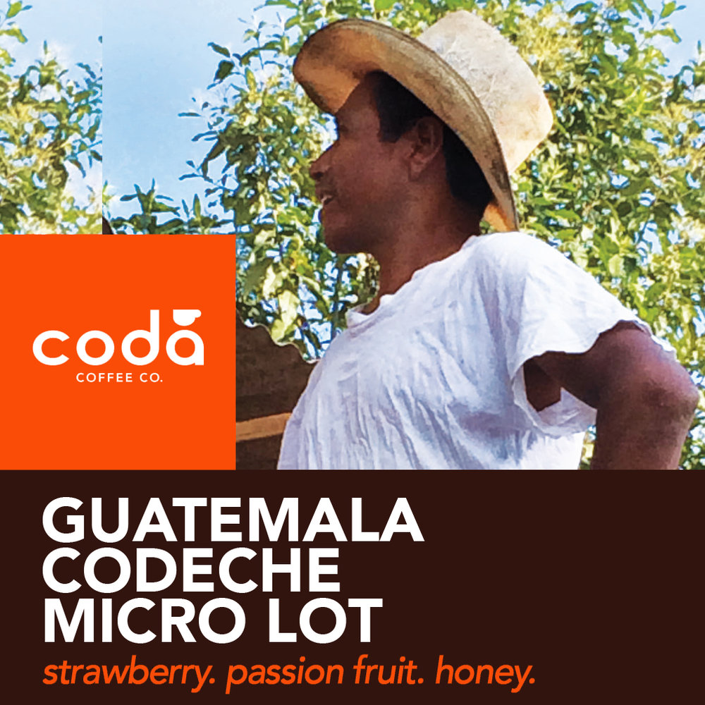 Coda Coffee Company Guatemala Codeche Micro Lot Coffee