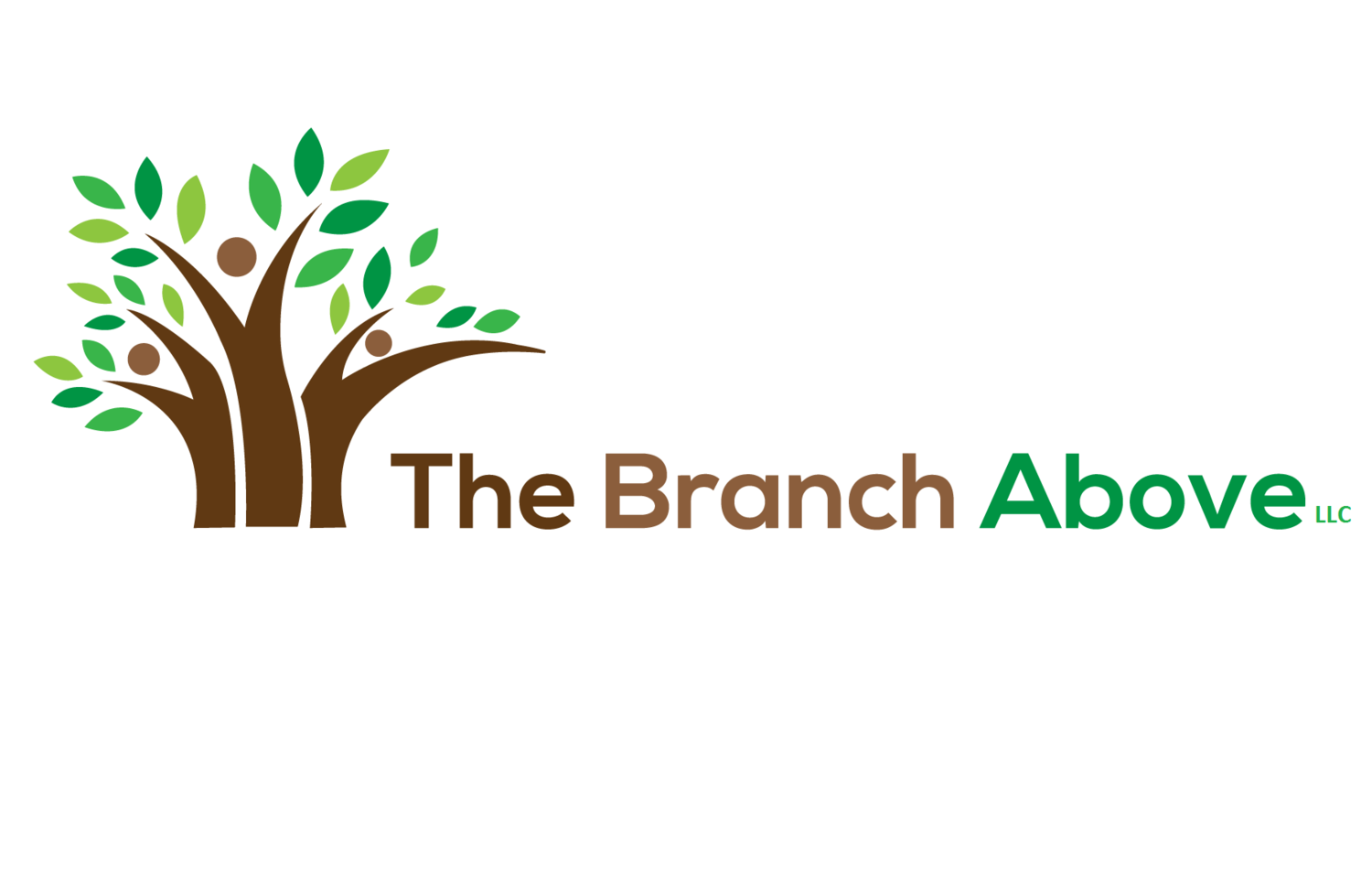 The Branch Above
