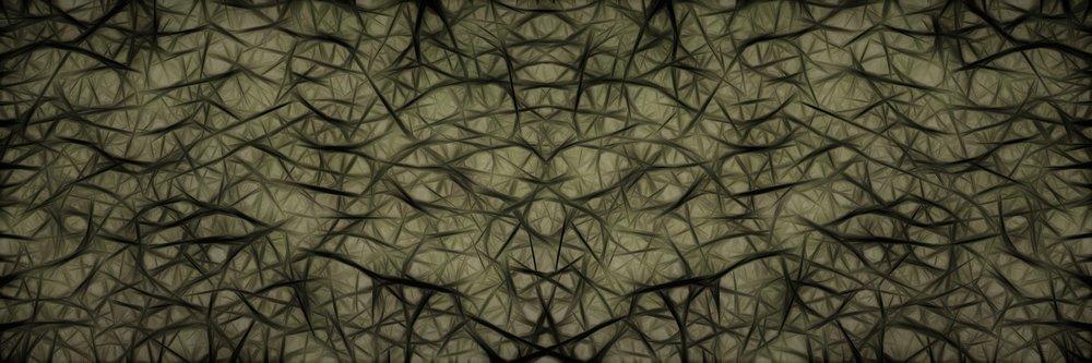 neurons-2874615_1920.jpg