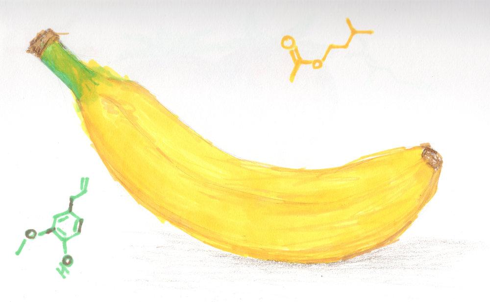 Isoamyl Acetate + Eugenol = Banana