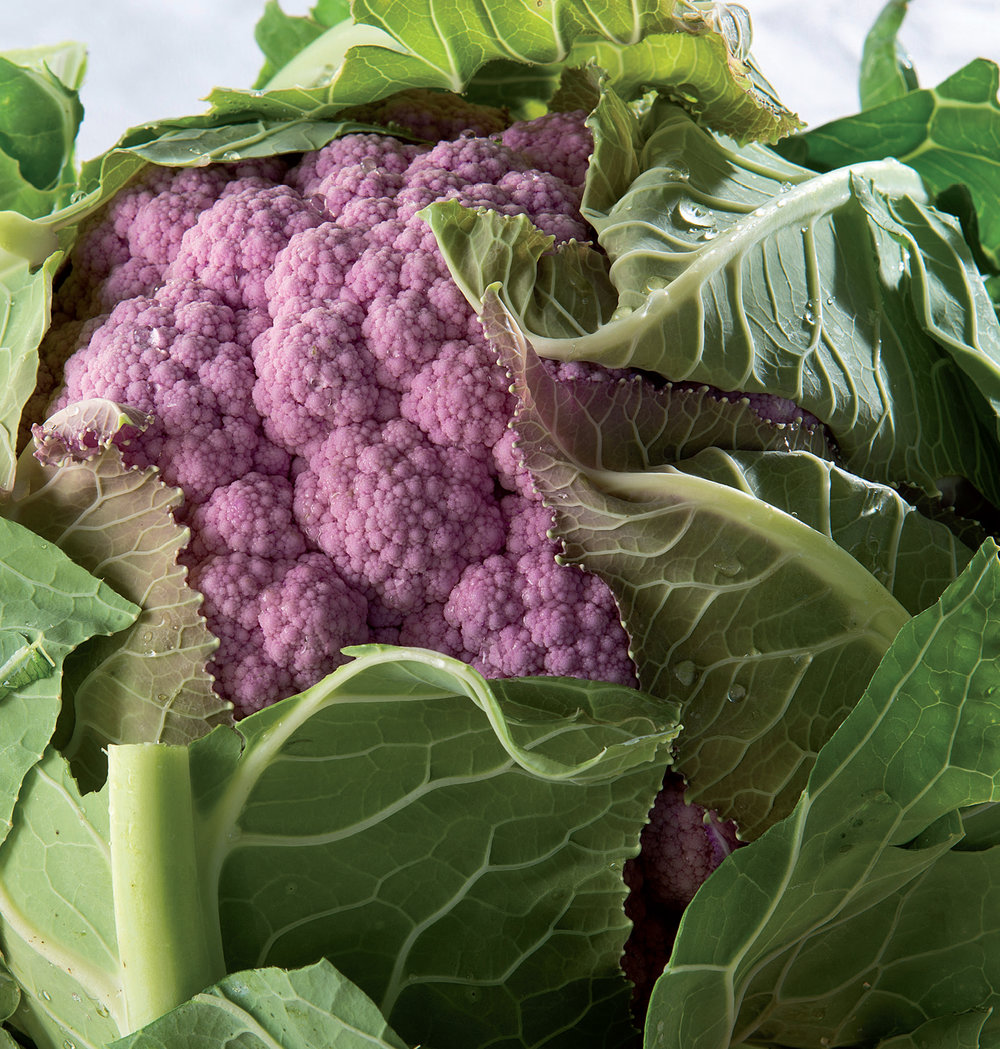 Mulberry Cauliflower